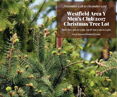 While the Westfield Area Y Men's Club 2017 Christmas Tree Lot doesn't officially open until Nov 25th, we could use your help unloading and set up now.