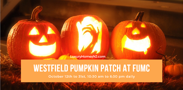 If pumpkins feature prominently in your Halloween decorations, visit the Westfield Pumpkin Patch at FUMC any day between Oct 12th & 31st. Stop by on movie nights for an extra special treat.