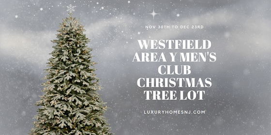 The Westfield Area Y Men's Club Christmas Tree Lot opens for business from Nov 30th to Dec 23rd at the Elm St Athletic Club across from Stop & Shop.