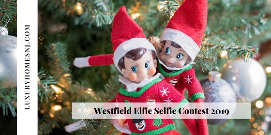 Shop local businesses for your holiday needs this month and take part in the Westfield Elfie Selfie Contest 2019. Watch for Elf on a Shelf, grab your receipt, take a photo of you, him and your receipt for your chance at a great weekly prize.