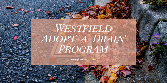 Sign up for the Westfield Adopt-a-Drain Program to help keep our 3000 local storm drains clean of debris and prevent flooding.