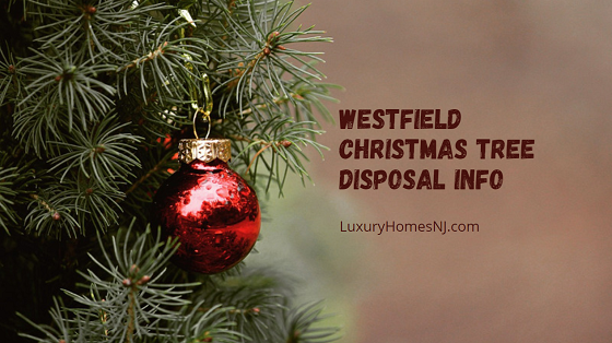 Unfortunately, Westfield curbside service does not include Christmas tree disposal. But the City allows free drop off at the Conservation Center every Saturday during January.